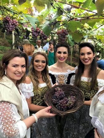 Comitiva da Festa da Uva 2019 prestigia abertura da colheita da fruta