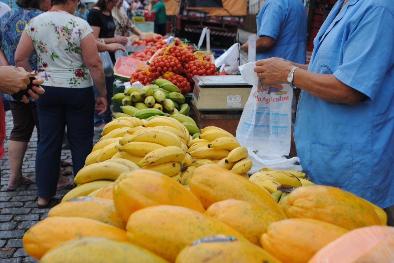 Festa das Colheitas celebra Caxias do Sul como maior produtor de hortifrutigranjeiros do Estado