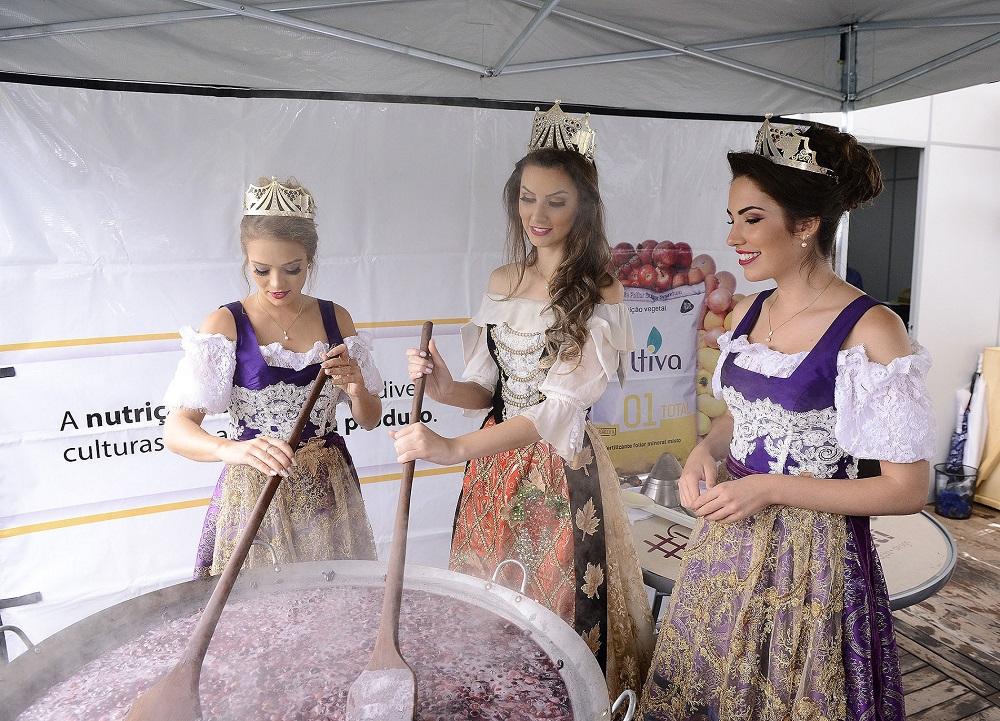 Soberanas colhem fruta do parreiral  e fazem chimia durante Festa da Uva 2019
